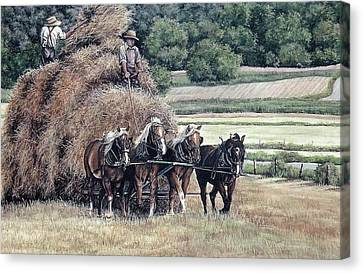 Haying Canvas Print by Patricia Brandt