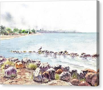 Hazy Morning At Crab Cove In Alameda California Canvas Print by Irina Sztukowski