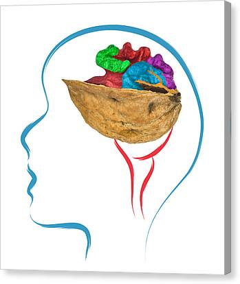 Head And Brain Abstract Canvas Print by Ioan Panaite