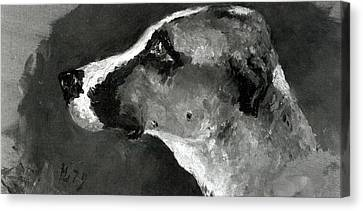 Head Of A Dog With Short Ears Canvas Print by Henri de Toulouse-Lautrec