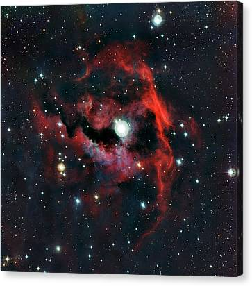 Head Of Seagull Nebula Canvas Print by European Southern Observatory
