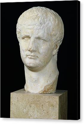 Head Of Titus Canvas Print by Anonymous