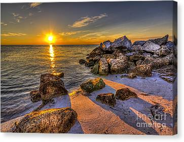 Healing Power Canvas Print by Marvin Spates