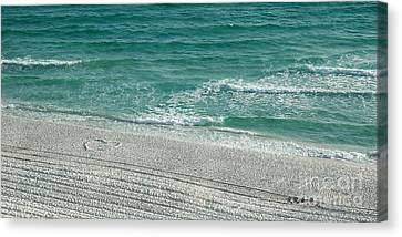 Heart In The Sand Canvas Print by Roe Rader