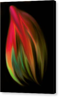 Heat Of The Moment Canvas Print by Marianna Mills