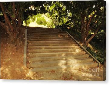 Heavenly Stairway Canvas Print by Madeline Ellis