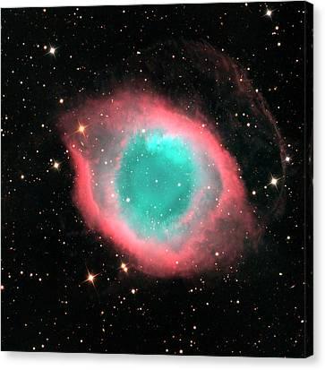 Helix Nebula (ngc 7293) Canvas Print by Damian Peach