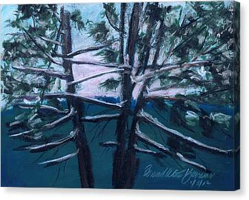 Hemlocks Snowy Morning Canvas Print by Bernadette Kazmarski