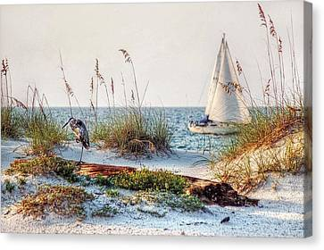 Heron And Sailboat Larger Sizes Canvas Print by Michael Thomas