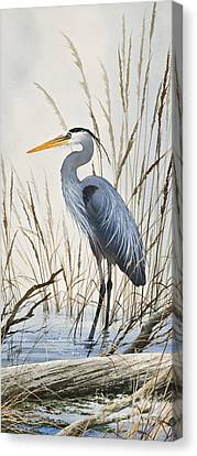 Herons Natural World Canvas Print by James Williamson