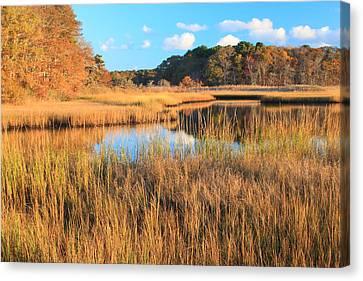 Herring River Cape Cod Marsh Grass Autumn Canvas Print by John Burk