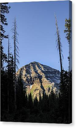 Hesperus Mountain Canvas Print by Aaron Spong