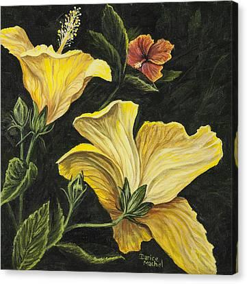 Hibiscus 2 Canvas Print by Darice Machel McGuire