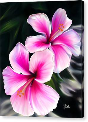 Hibiscuses Canvas Print by Laura Bell