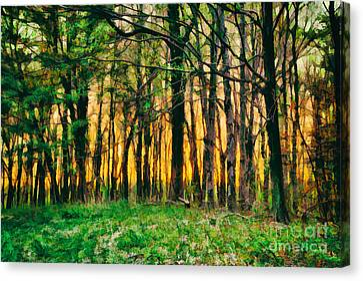 Hidden Sunrise In The Blue Ridge Canvas Print by Dan Carmichael