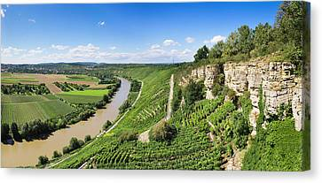 High Angle View Of Vineyards, Neckar Canvas Print by Panoramic Images