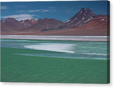 High In The Andes Mountains In Chile Canvas Print by Mallorie Ostrowitz