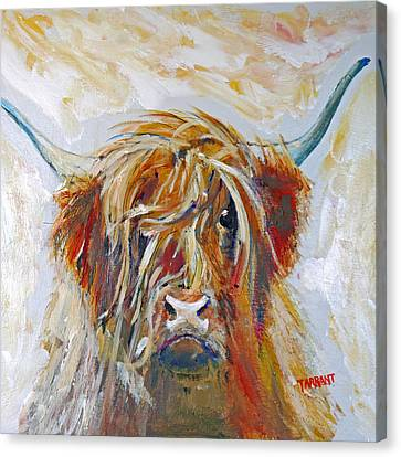 Highland Cow Canvas Print by Peter Tarrant