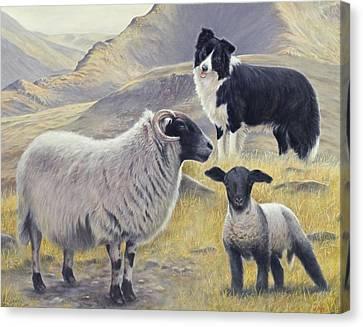 Highland Spirit Canvas Print by John Silver
