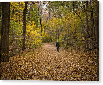 Hiker IIi  Canvas Print by Tim Fitzwater