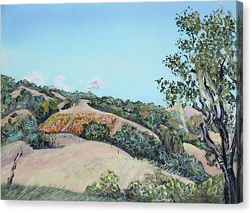 Hill Vineyard And Friendly Clouds Canvas Print by Asha Carolyn Young
