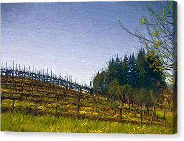 Hillside Vines Canvas Print by John K Woodruff