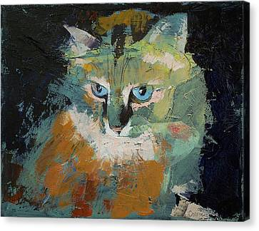 Himalayan Cat Canvas Print by Michael Creese