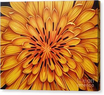 Hipnose Canvas Print by Paula L