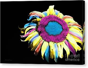 Hippie Sunflower Rainbow Painterly Canvas Print by Andee Design