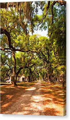 Historic Lane 2 Canvas Print by Steve Harrington