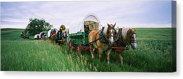 Historical Reenactment, Covered Wagons Canvas Print by Panoramic Images