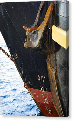 Hms Bounty Bow Canvas Print by Patricia Trudell