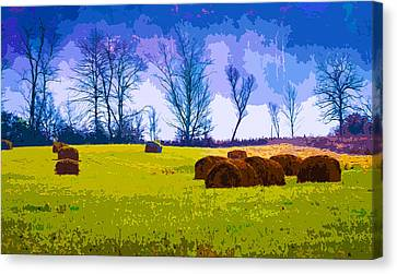 Hocking Hills 10 Canvas Print by Brian Stevens