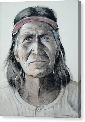 Hohoni Canvas Print by Terri Ana Stokes