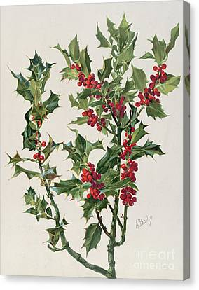 Holly Canvas Print by Alice Bailly