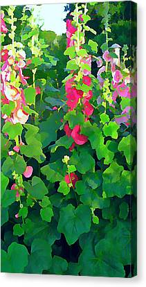Hollyhocks By The Sea Canvas Print by Anne Sterling