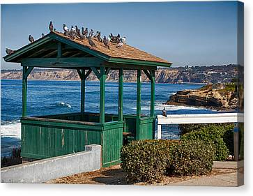 Home By The Sea Canvas Print by Peter Tellone