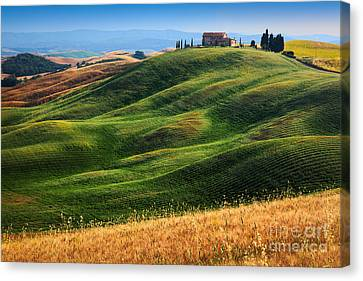 Home On The Hill Canvas Print by Inge Johnsson