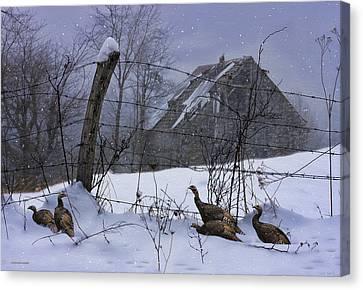 Home Through The Snow Canvas Print by Ron Jones