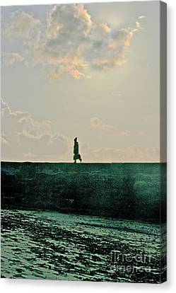 Homeward Bound Canvas Print by Terri Waters