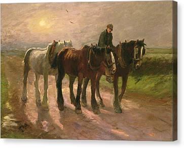 Homeward Canvas Print by Harry Fidler