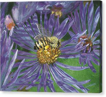 Honeybee On Purple Aster Canvas Print by Lucinda V VanVleck