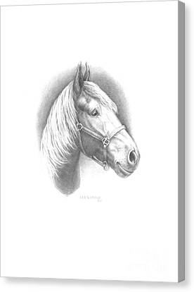 Horse-1 Canvas Print by Lee Updike