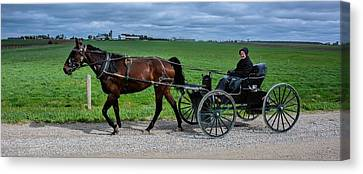 Horse And Buggy On The Farm Canvas Print by Henry Kowalski
