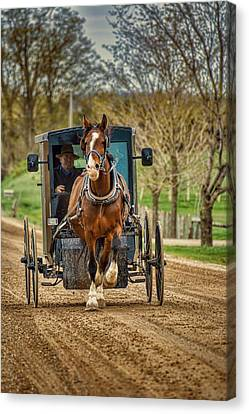 Horse And Buggy With Two Passengers Canvas Print by Henry Kowalski