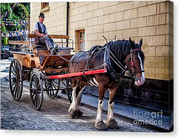 Horse And Cart Canvas Print by Adrian Evans
