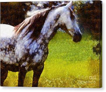 Horse And I Will Wait For You Canvas Print by Janine Riley