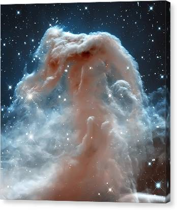 Horse Head Nebula Canvas Print by The  Vault - Jennifer Rondinelli Reilly