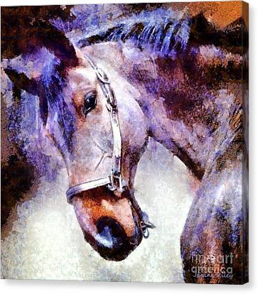 Horse I Will Follow You Canvas Print by Janine Riley