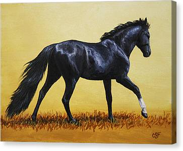 Horse Painting - Black Beauty Canvas Print by Crista Forest